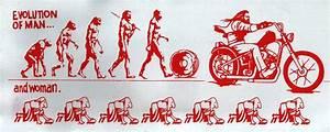 Evolution Of Woman | www.pixshark.com - Images Galleries ...