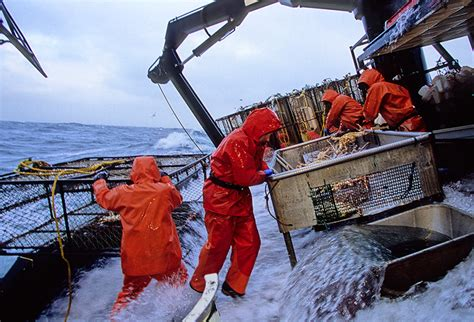 Crab Fishing Boat Jobs by Alaskan Crab Company Alaskan Fishing Resorts