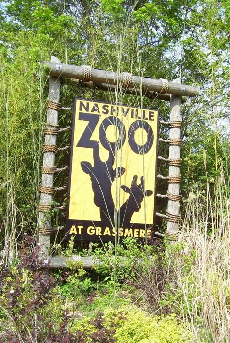 10 tips for visiting the nashville zoo from my family to yours the brentwood tn guide
