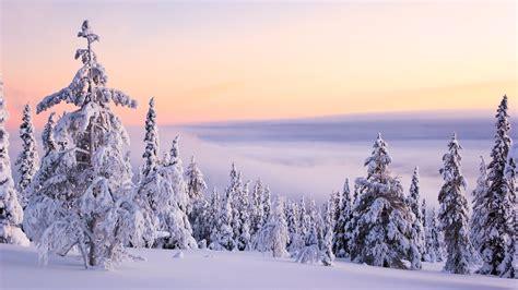 winter desktop wallpaper free cool high