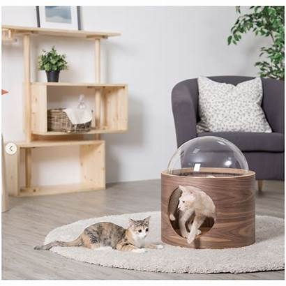 Cat Bed Wall Modern Mounted Spaceship Ultra