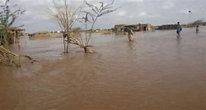 Sudan's Red Crescent warns of 'alarming rise' in Blue Nile ...