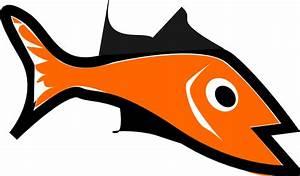 Orange Fish Clip Art at Clker.com - vector clip art online ...
