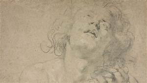 Power And Grace  Drawings By Rubens  Van Dyck  And