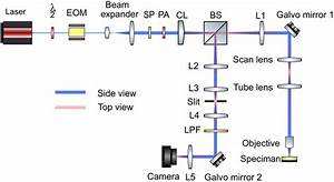 Schematic Diagram Showing The Optical Setup For Lsfmm  Eom