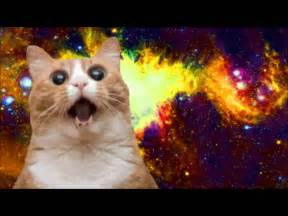 space cats my song for space cat