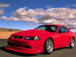 1999 Ford Mustang SVT Cobra - Overview - CarGurus