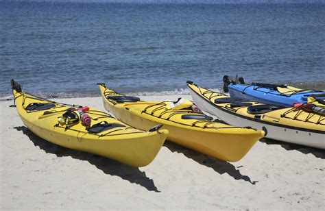 Cape Cod Kayaking  The Ultimate Guide  Best Of Cape Cod