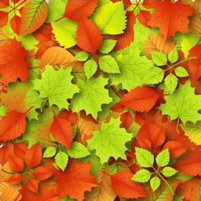 clipart autunno caduti sfondo di foglie d autunno free vectors clipart me