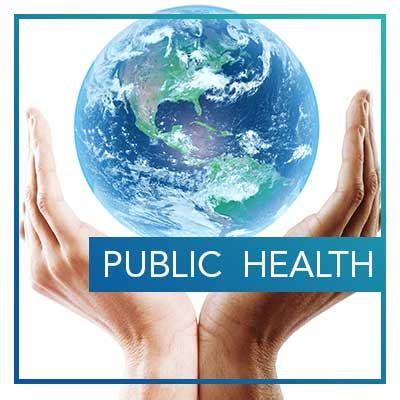 department  health professions hofstra  york