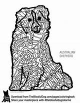 Shepherd Coloring Australian Pages Books Printable Shepherds Aussie Dogs Mini Adult Getcolorings Print Dog Well sketch template
