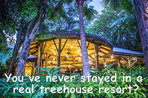 Treehouse Resort-best Treetop Hotel In The World