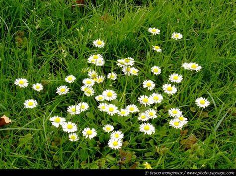 si鑒e printemps printemps
