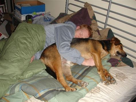 Do You Let Your Dog Sleep In Bed?