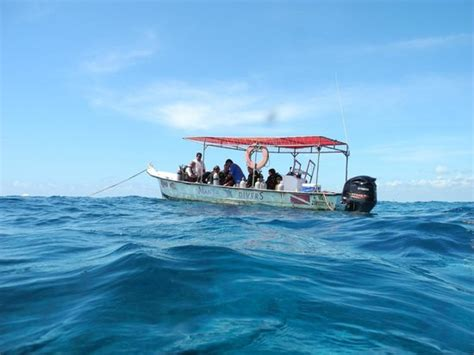 Just Add Water Boats Manta by The Boat Picture Of Manta Divers Cancun Cancun