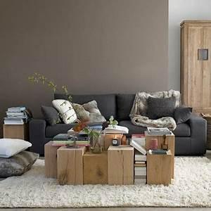 salon murs couleur taupe et pan de mur gris clair With tapis oriental avec bout de canapé buche