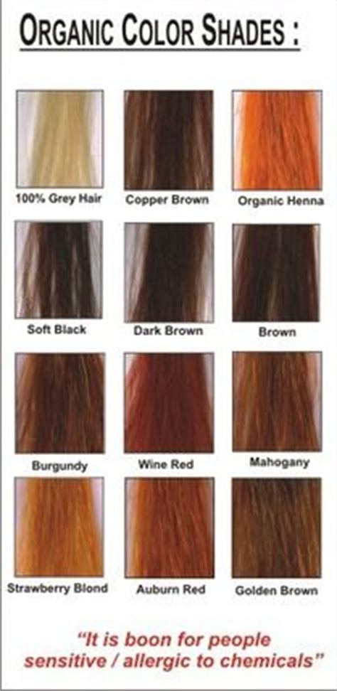Hair Colors List Pictures by 35 Best Images About Henna On