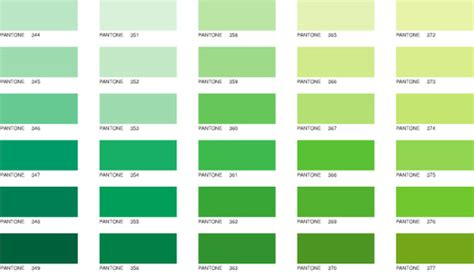chambre palette vert the by the