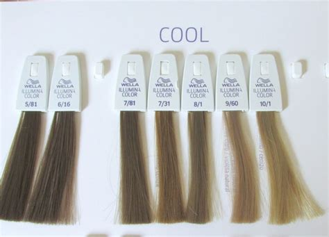 1000+ Ideas About Ash Brown Hair Dye On Pinterest