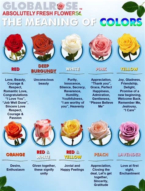 colors of roses meaning the meaning of colors global flower