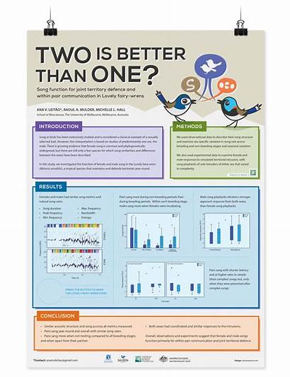 Poster Scientific Conference Behance Island Assab 47th