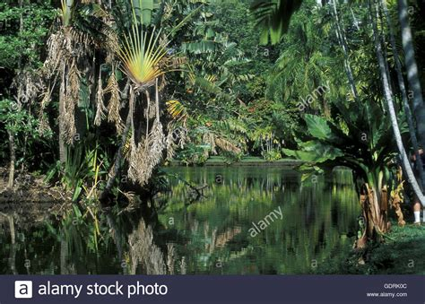 Teich Im Garten Teich Garten Stock Photos Teich Garten Stock Images Alamy