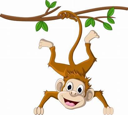 Monkey Clipart Hanging Transparent Cartoon Jing Fm