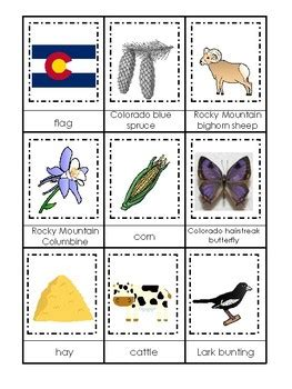 colorado state symbols themed  part matching game