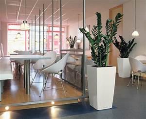 Pflanzen Für Flur : pflanzen im b ro f r eine angenehme arbeitsatmosph re ~ Bigdaddyawards.com Haus und Dekorationen