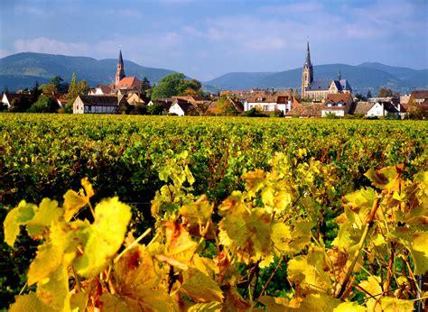 Pfälzer Weinland Genusswandern Im Garten Eden Der Pfalz