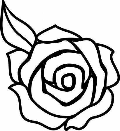 Outline Rose Flower Clipart Clipartion