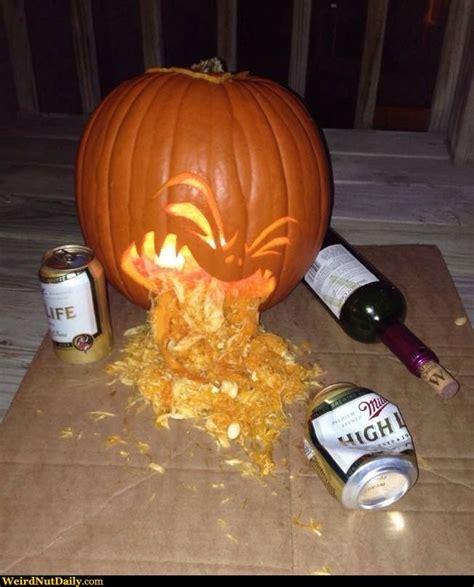 pumpkin throwing  beer google search halloween
