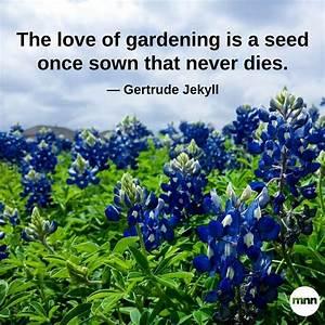 32 inspirationa... Garden Happiness Quotes