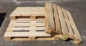 Bauen Mit Europaletten : selber bauen mit europaletten das gartenmagazin ~ Michelbontemps.com Haus und Dekorationen