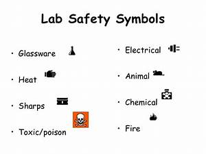 Science Lab Safety Rules Worksheet Answers Spongebob Safety Rules