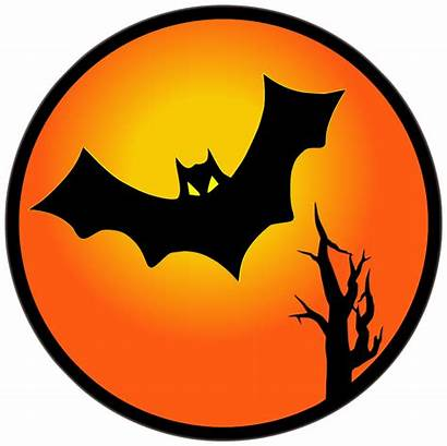 Halloween Bat Moon Transparent Bats Clipart Clip