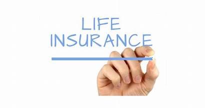 Insurance Important Why Kredx Investor