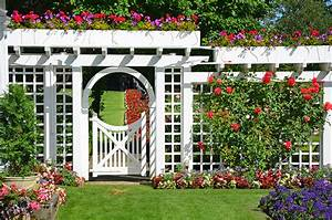 Boundary Fence Creates White Magic In Your Yard