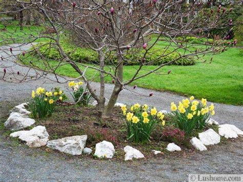 Spring Garden Design, 25 Spring Flower Beds and Yard