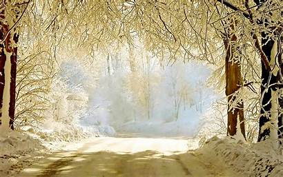 Winter Background Wallpapers Backgrounds Graphic Source Vector