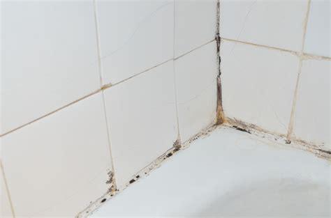 Schimmel Im Bad » Ursachen & Maßnahmen