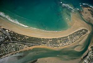 Protect The Ocean Grove Spit From Invasive Weeds