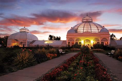 botanical gardens buffalo buffalo shines as a surprising student travel destination