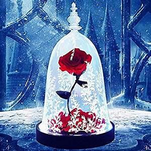 Rose Eternelle Sous Cloche : rose eternelle violette stabilis e sous cloche ~ Farleysfitness.com Idées de Décoration