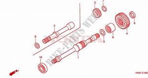 2001 Trx 350 Engine Diagram : final shaft engine trx350fe1 2001 fourtrax 350 atv honda ~ A.2002-acura-tl-radio.info Haus und Dekorationen