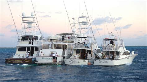 Fishing Boat Charters Cairns by Game Fishing Charters Cairns Port Douglas Marlin