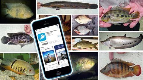 fish freshwater fwc app fishbrain nonnative florida species track help angler wildlife magazine conservation coastalanglermag