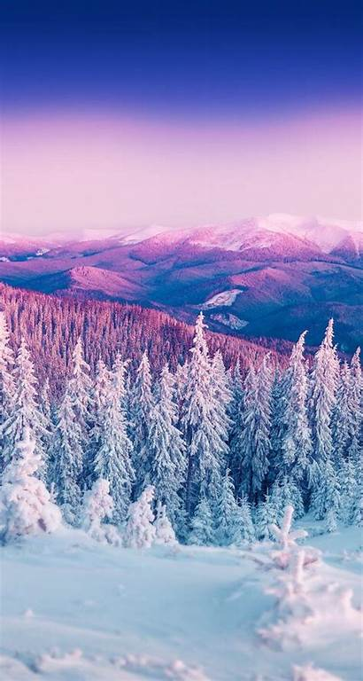 Iphone Winter Snow Wallpapers Tree Phone Backgrounds