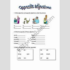 Opposite Adjectives  Esl Worksheet By Borna