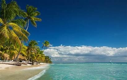 Tropical Landscape Beach Island Nature Palm Trees